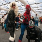 Oz Comic-Con 2014 (Sydney) cosplay - Black Cat, Spider-Man, Venom