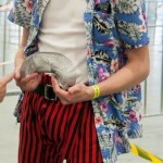 Oz Comic-Con 2014 (Sydney) cosplay - Ace Ventura