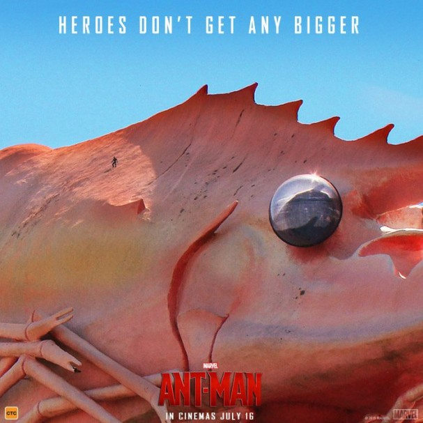 Ant-Man - Big Things - The Big Prawn (Ballina)